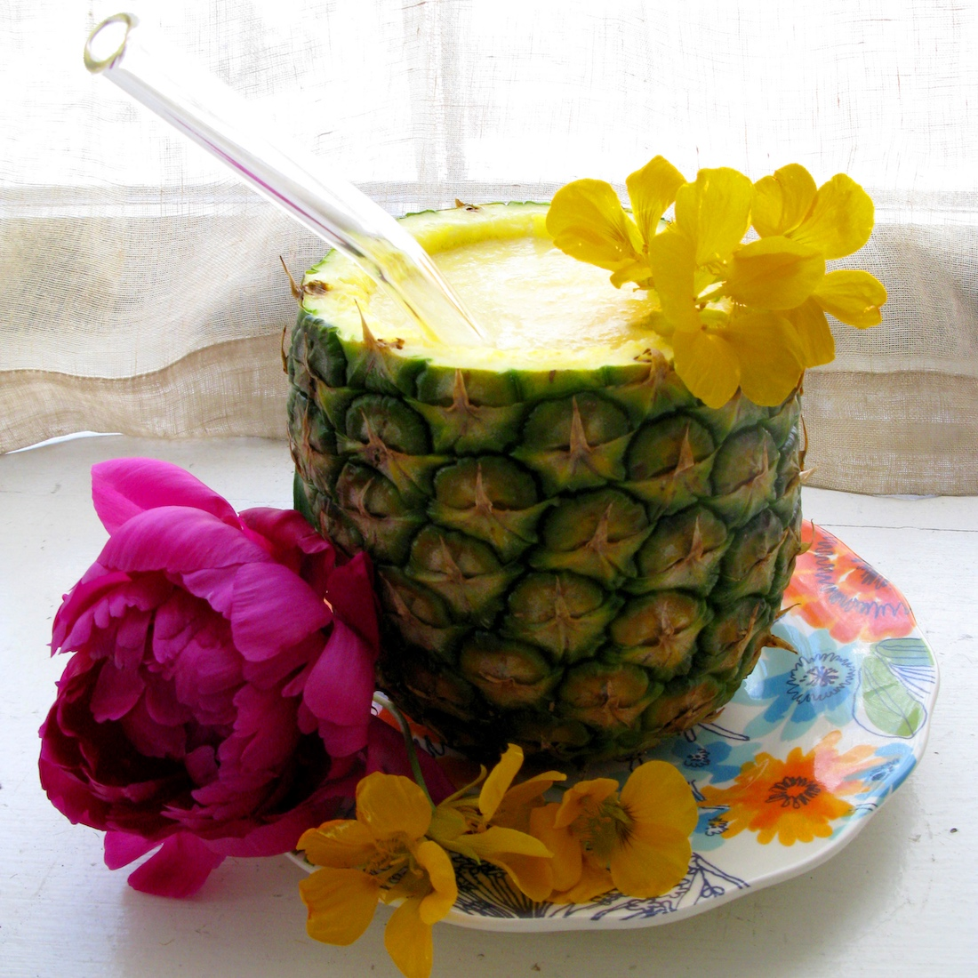 Barbara Sinclair Healthy Drink Pineapple Coconut Smoothie