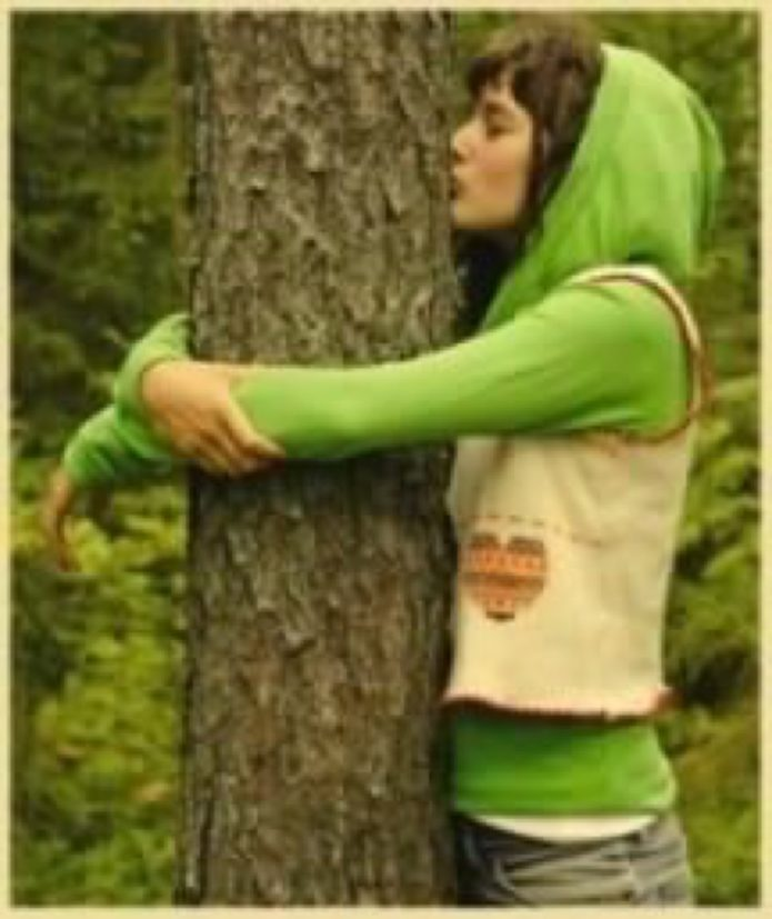 A Season For Giving to Yourself Again Tree Hugger Barbara Sinclair