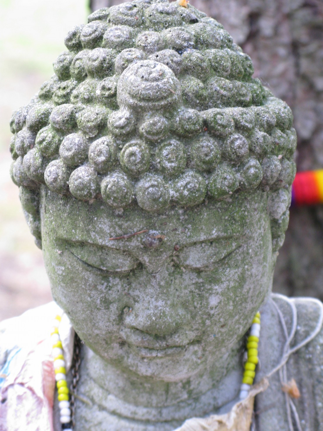 Staying in Balance An Ayurvedic Approach Buddha