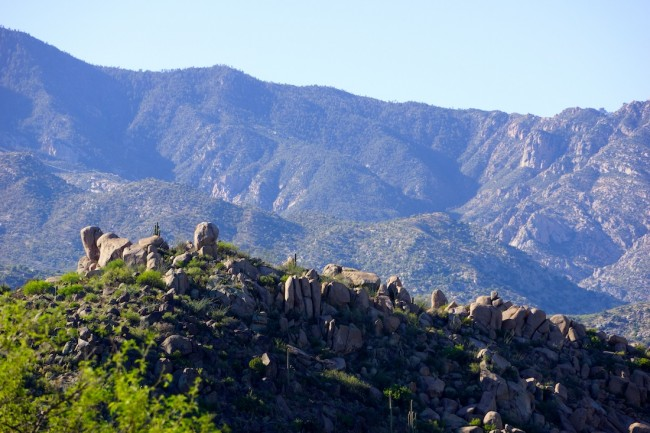 Barbara Sinclair Blog Ayurveda Art Foothills of the Santa Catalina Mountains My Love Affair with Nature