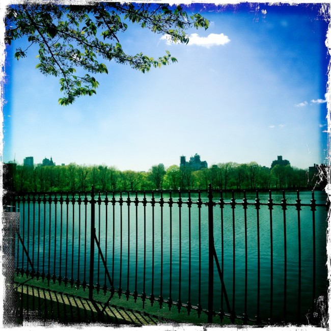 Barbara Sinclair A Walk in the Park Jacqueline Kennedy Onassis Reservoir