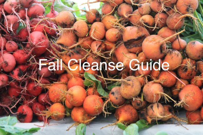 Fall cleanse guide for Ayurvedic constitutions by Banyan Botanicals, Barbara Sinclair Holistic Health
