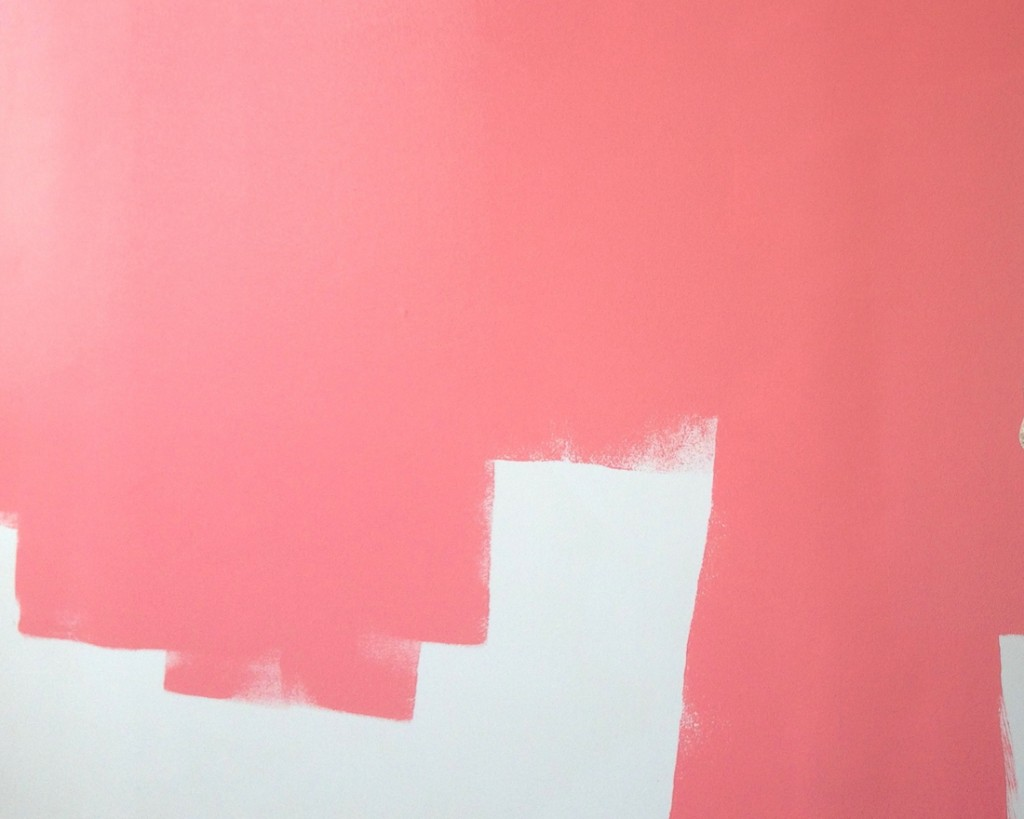 Barbara Sinclair Holistic Health, Pink Wall