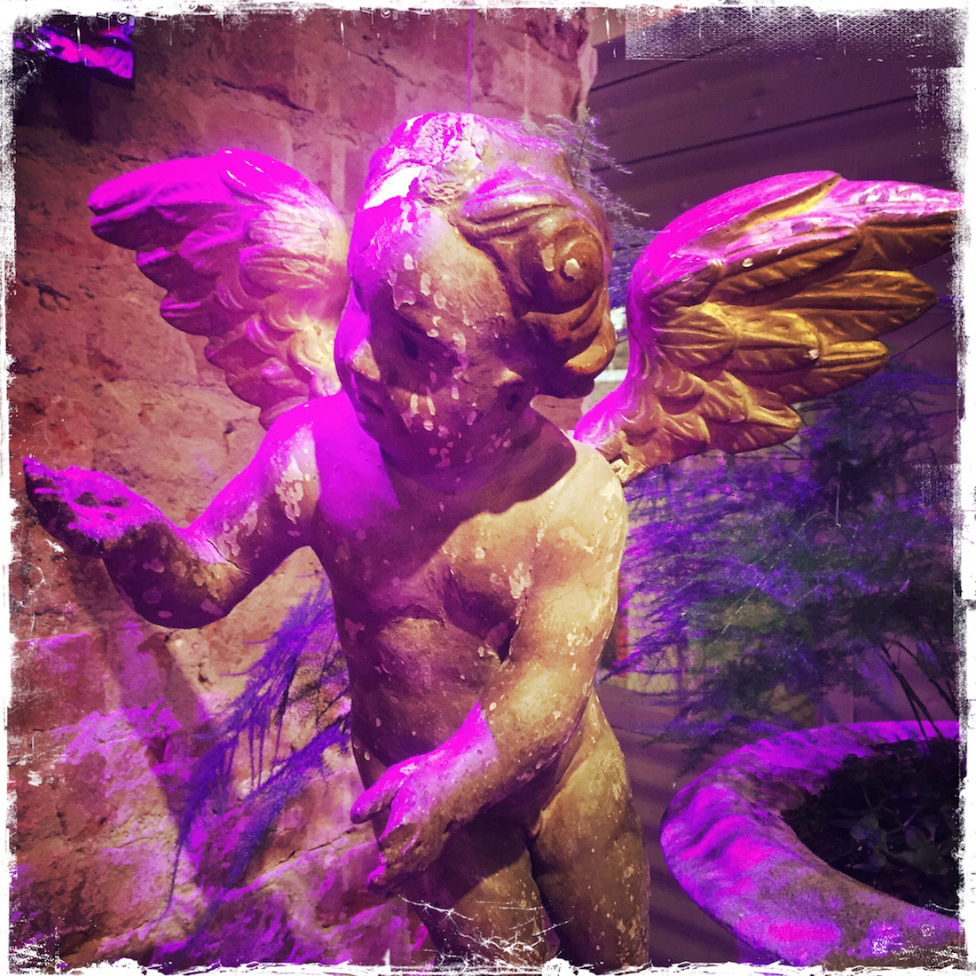 Barbara Sinclair Holistic Health and Healing Portfolio Pink Angel Asking for Help
