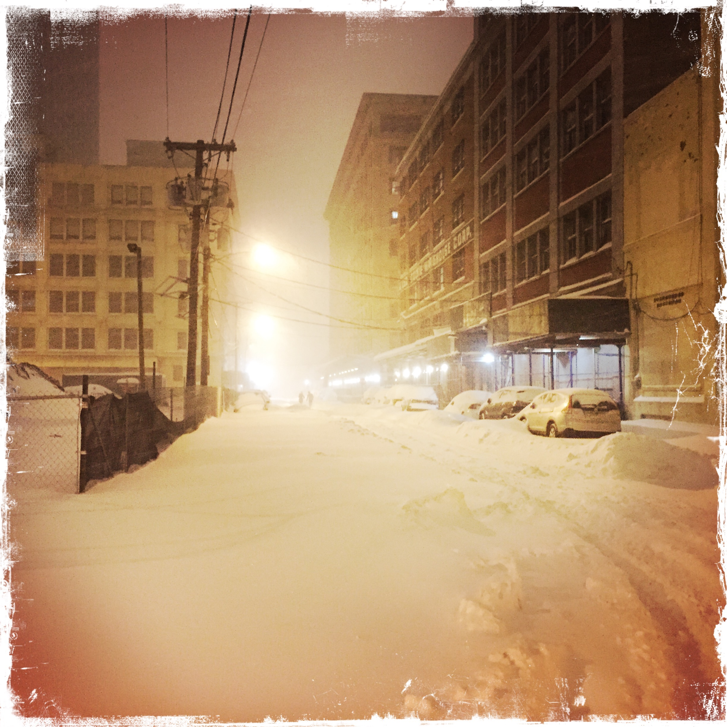 Barbara Sinclair, An Optimistic Nature-Lover's View of Winter Storm Jonas
