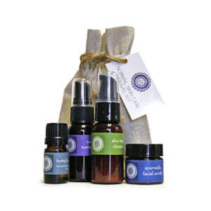 Travel Kit by Annmarie Gianni, Barbara Sinclair Holistic Health & Healing