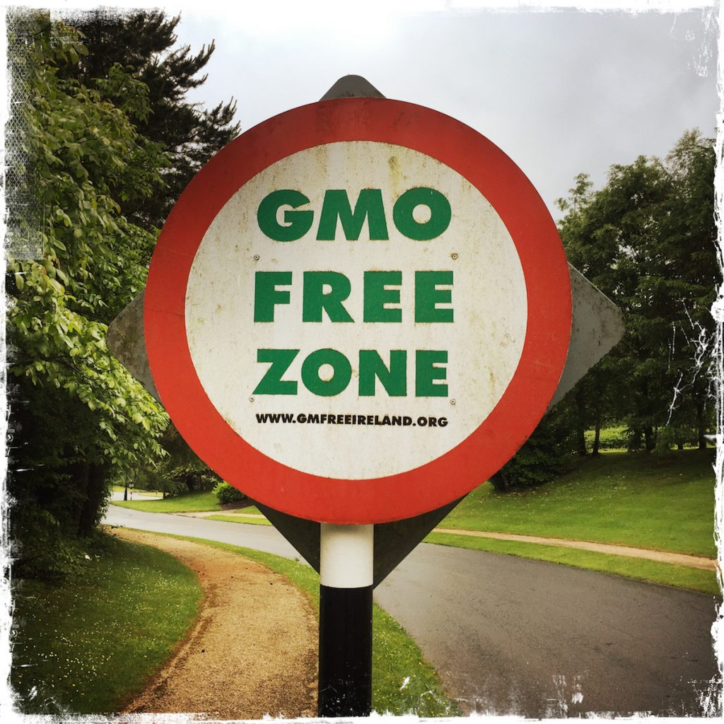 Leaving Expectations Behind, Barbara Sinclair, GMO free zones in Ireland