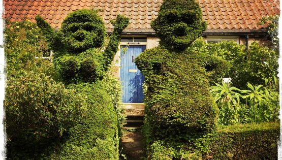 Humorous hedges in Scotland. Photo by Barbara Sinclair