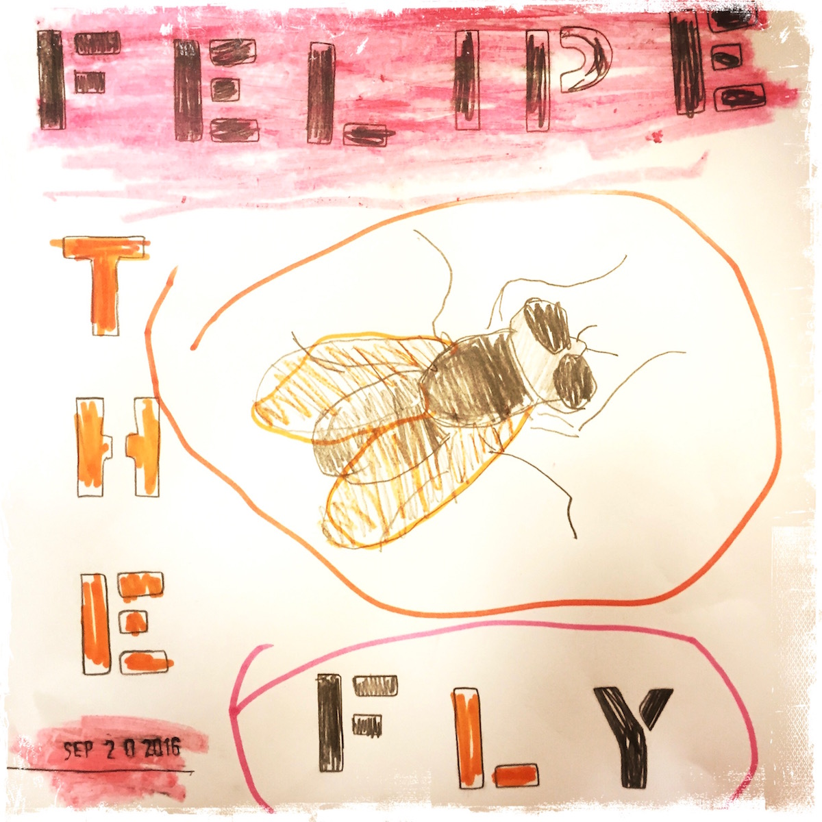 Felipe the Fly, fly sumbplosm, animal symbolism, poetry, Barbara Sinclair