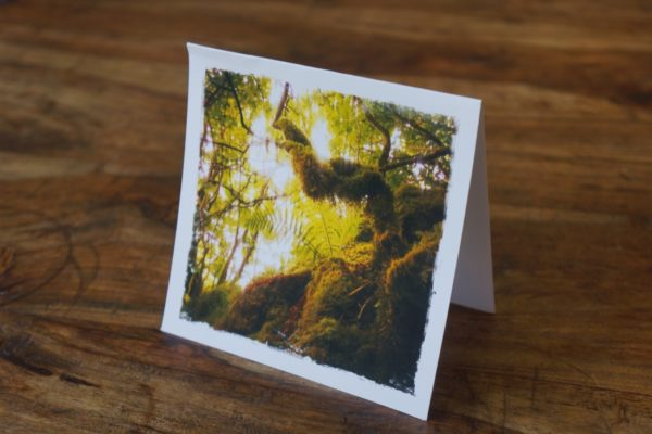 Mysterious Burren Note Card by Barbara Sinclair