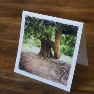 Otherworldly Tree Note Card by Barbara Sinclair
