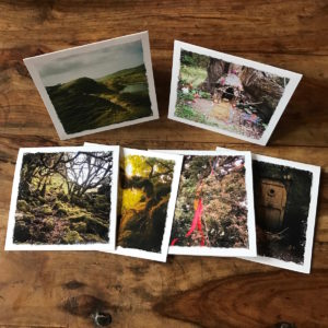 Do You Believe in Fairies Multipack Note Cards, Photograpy by Barbara Sinclair