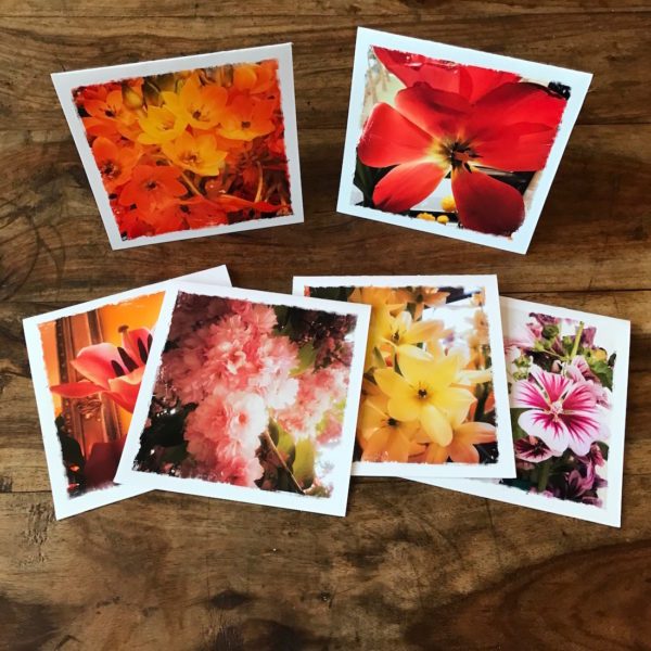 Barbara Sinclair Flower Power Multipack Note Cards Healing Gifts