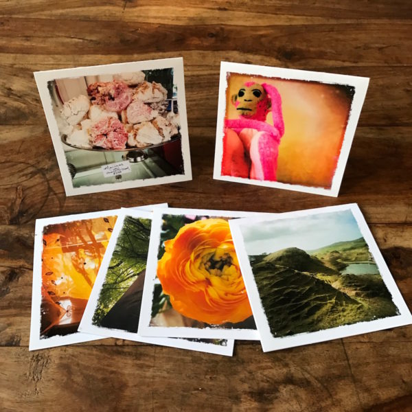 Mystery Multipack Note Cards, Photography by Barbara Sinclair