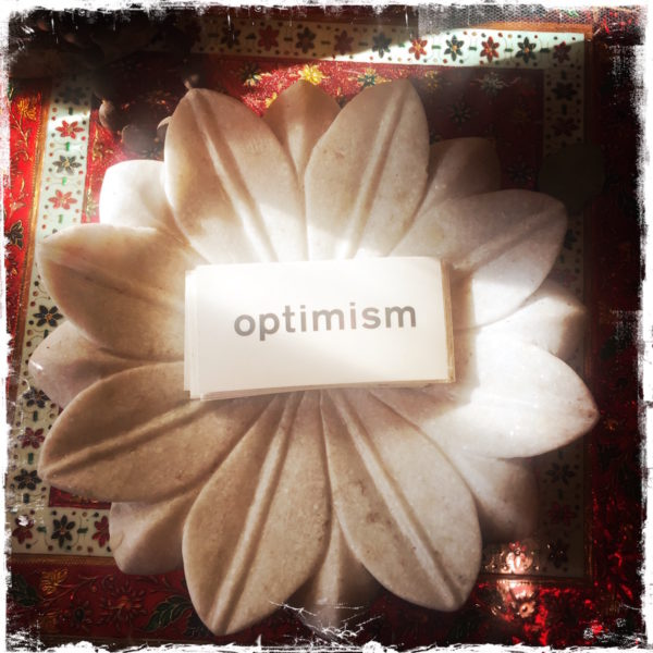 Optimism Cards by Reid Seifer, photo by Barbara Sinclair