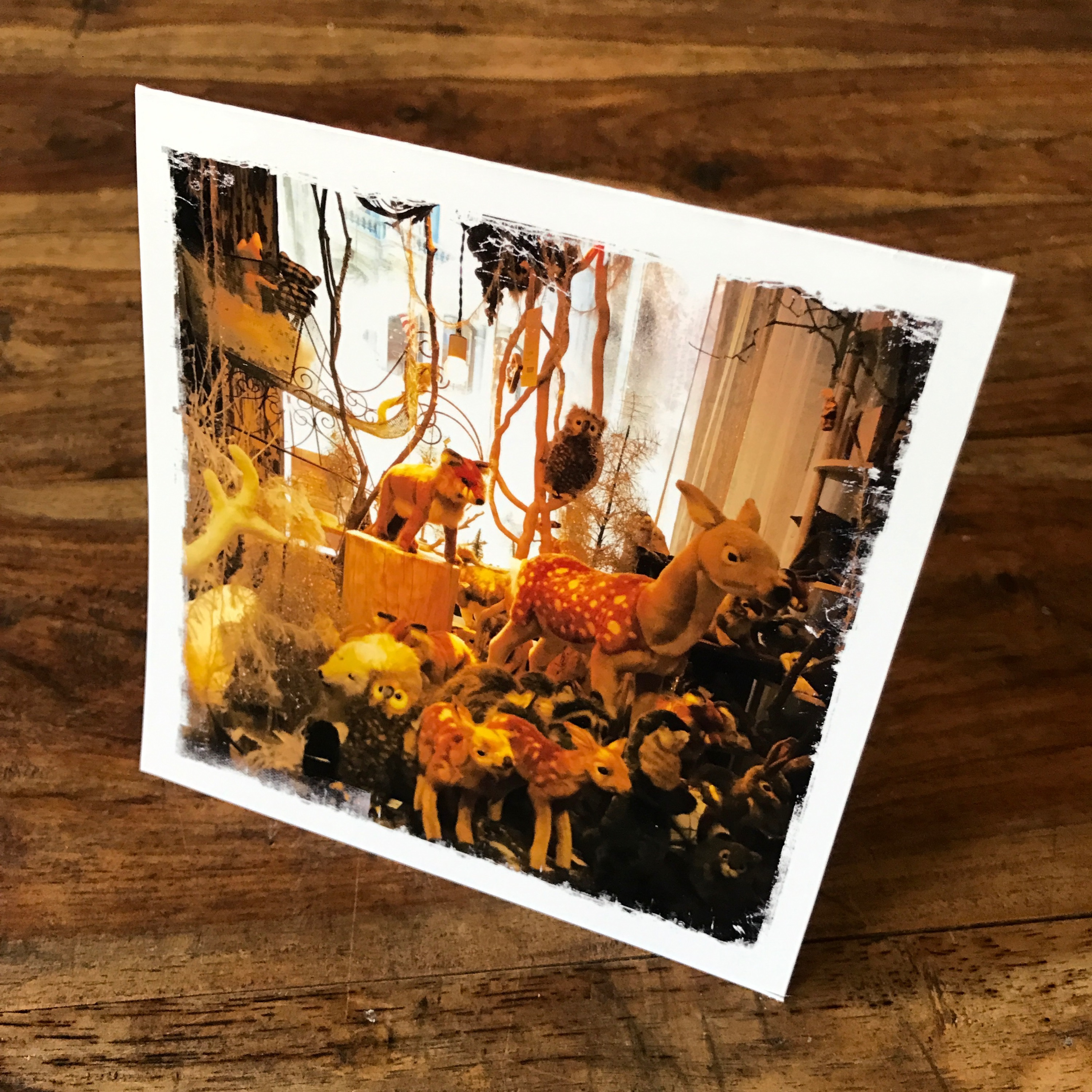 Holiday Menagerie Note Card, ABC Home, NYC, Photo by Barbara Sinclair