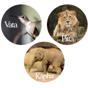 vata, pitta, kapha. One-hour Ayurvedic Consultation, Barbara Sinclair Holistic Health