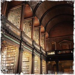 Long Room Library, Dublin Note Card, Photo by Barbara Sinclair