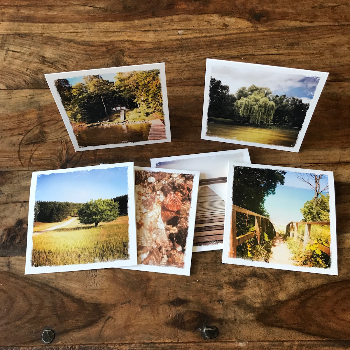 Up North in Michigan Multipack Note Cards, Photography by Barbara Sinclair