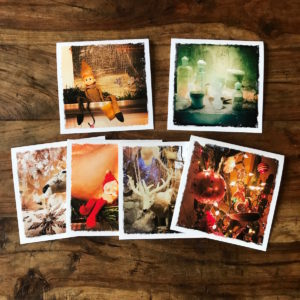 Holiday Multipack Note Cards #2, photos by Barbara Sinclair