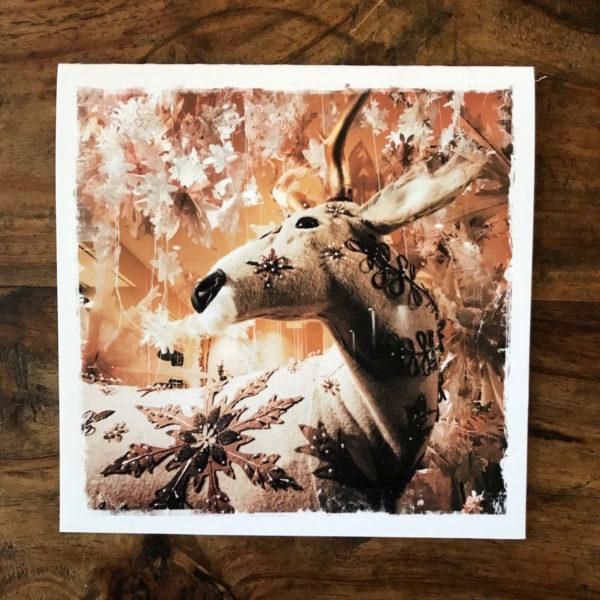Reindeer Magic Note Card, photo by Barbara Sinclair