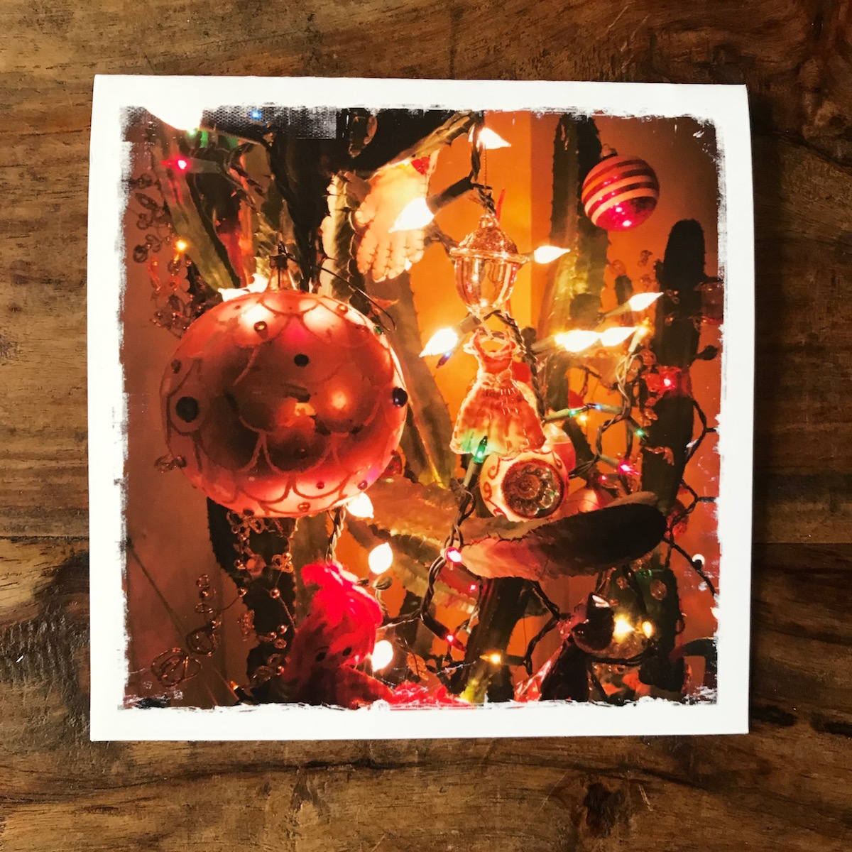 Vintage Ornaments on Cactus Note Card, photo by Barbara Sinclair
