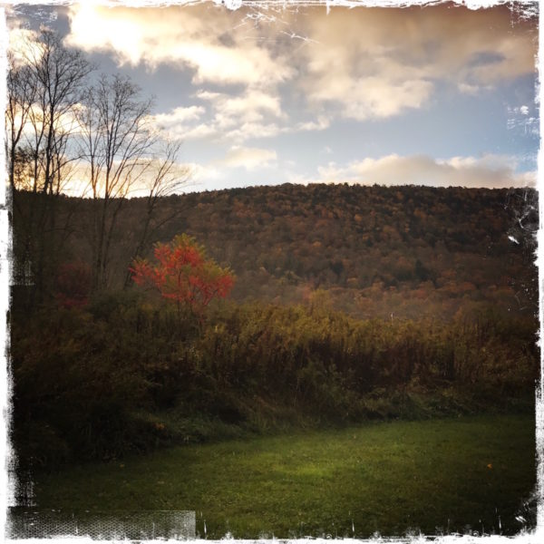 Autumn in the Catskills, photo by Barbara Sinclair