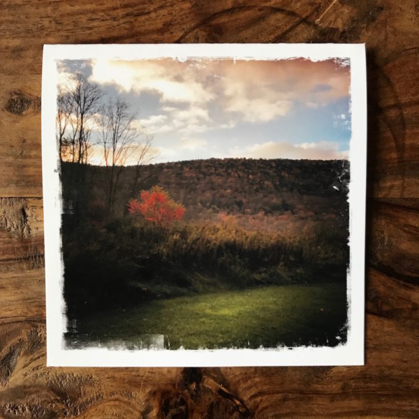 Autumn in the Catskills Note Card, Photo by Barbara Sinclair