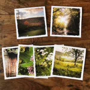 Catskill Mountains Multipack Note Cards, photos by Barbara Sinclair