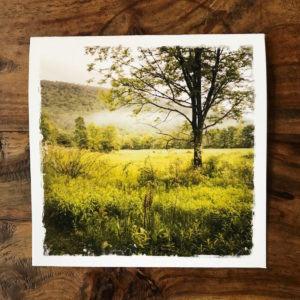 Morning Fog in the Catskills Note Card, photo by Barbara Sinclair