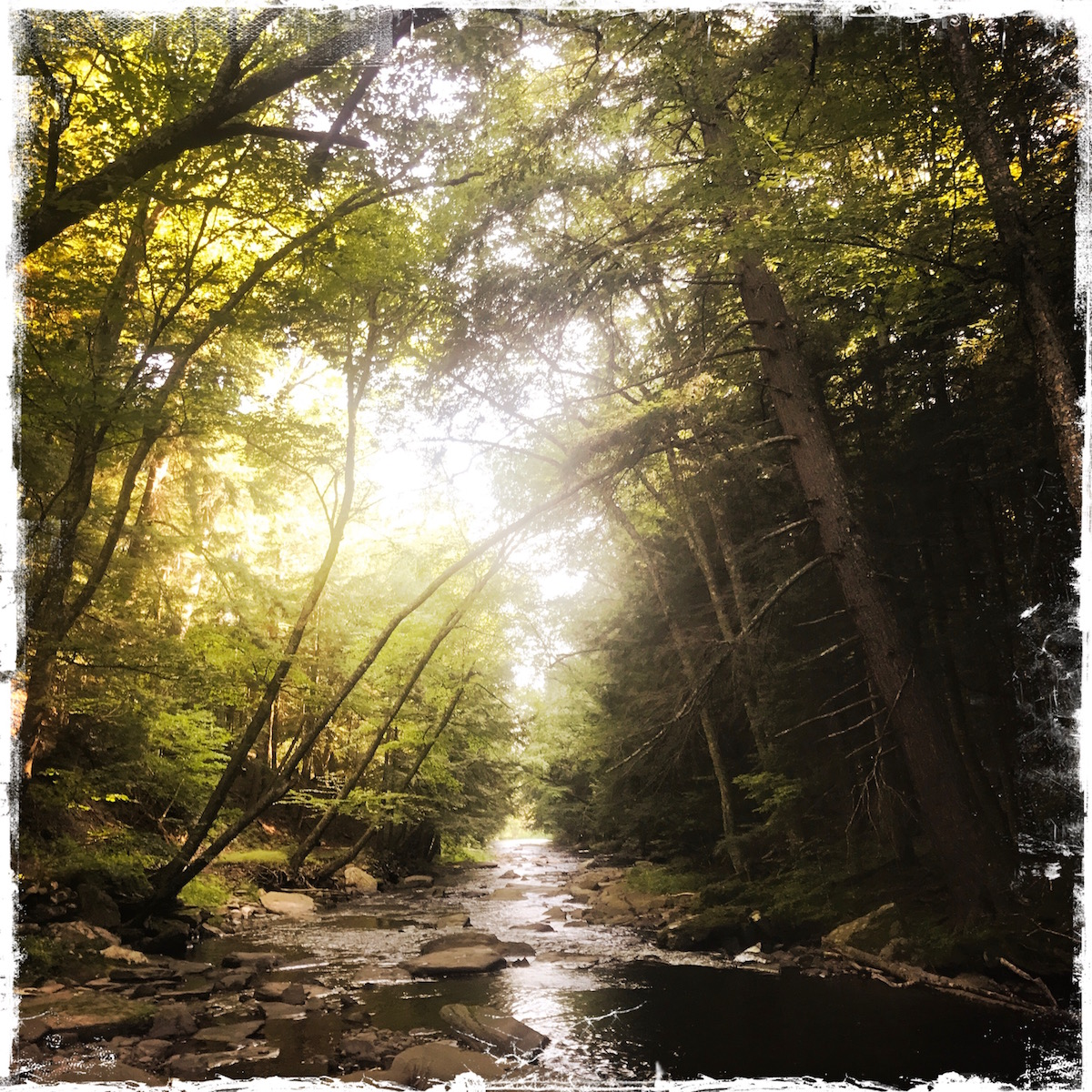 Saskawhihiwine River, Catskills, NY, photo by Barbara Sinclair